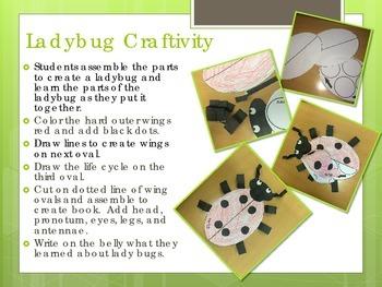 Ladybug Craftivity