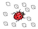 Ladybug Dice Roll
