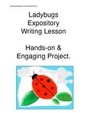 Ladybug Expository Writing Hands-On Activities