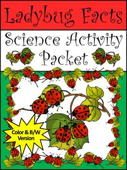 Ladybug Activities: Ladybug Facts Spring-Summer Activity Packet Bundle