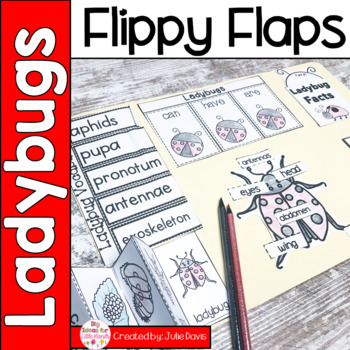Ladybug Flippy Flaps Interactive Notebook Lapbook