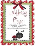 Ladybug Fun Multidisciplinary Thematic Unit