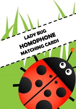 Ladybug Homophone Matching Cards