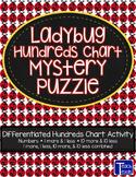 Ladybug Hundreds Chart Mystery Puzzle