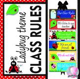 Ladybug Lady Bug Class Rules - EDITABLE