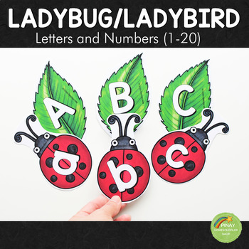 Ladybug/Ladybird Letter and Number Cards