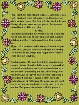 Ladybug! Ladybug! A closed syllable reading game