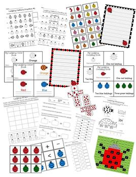 Ladybug Learning Activity Set Pack Reading Writing & Math