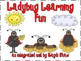 Ladybug Learning Fun