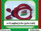 Ladybug Life Cycle: {3D Life Cycle of a Ladybug Science Craftivity}