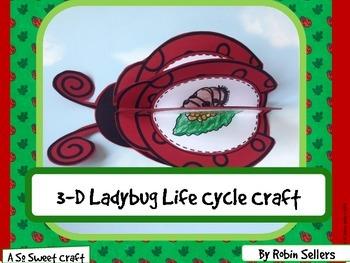 Ladybug Life Cycle: {3D Life Cycle of a Ladybug Science Cr