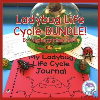 Ladybug Life Cycle BUNDLE!
