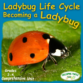 Ladybug Life Cycle - Comprehensive Unit
