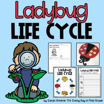 Life Cycle of a Ladybug (craft, book & printables!)