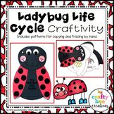 Ladybug Life Cycle Craft