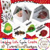 Ladybug Life Cycle Craftivity –3D TetraHexaFlexagon Kaleid
