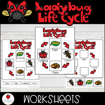 Ladybug Life Cycle-Cut & Paste