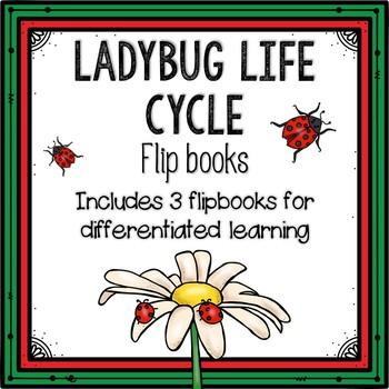 Ladybug Life Cycle Flipbook