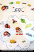 Ladybug Life Cycle Craft, Science Interactive Notebook