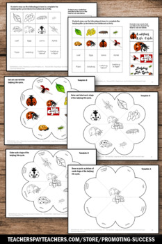 Ladybug Life Cycle Interactive Notebook supplements Insects Unit