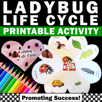 Ladybug Life Cycle Interactive Science Notebook Activities