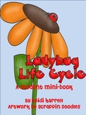 Ladybug Life Cycle Mini-Book (also sold as part of Ladybug