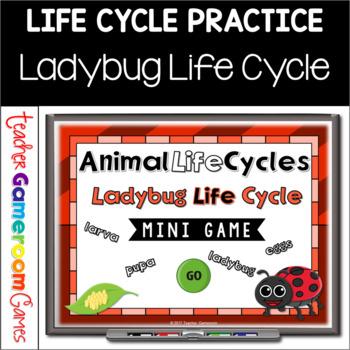 Ladybug Life Cycle Mini Powerpoint Game