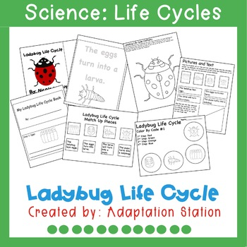 Ladybug Life Cycle Mini Unit for Special Education