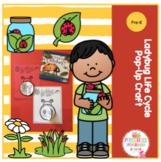 Ladybug Life Cycle Pop-Up Craft