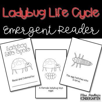 Ladybug Life Cycle Reader