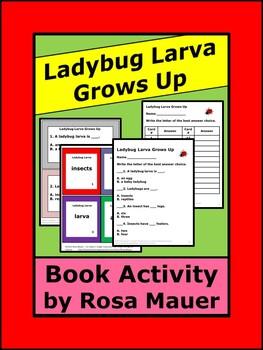Ladybug Larva Grows Up