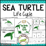 Sea Turtle Life Cycle Set