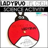 Ladybug Life Cycle Spinner FREEBIE