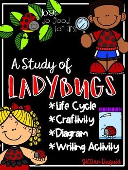 Study of Ladybugs ~ Enrichment Think Tank