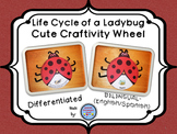 Ladybug Life Cycle Wheel Craftivity {BILINGUAL - SUPER CUTE!}