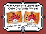 Ladybug Life Cycle Wheel Craftivity {BILINGUAL - SUPER CUTE!}