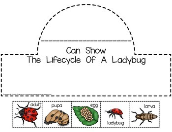 Ladybug Lifecycle Crown