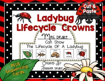 Ladybug Lifecycle Crown