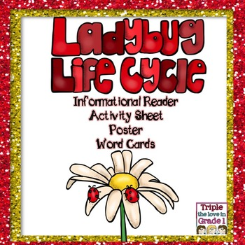 Ladybug Lifecycle/Inform.Reader/Activity Sheet/Poster/Word Cards