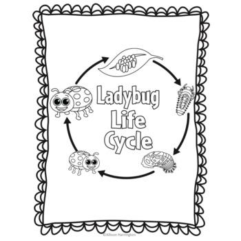 Ladybug Lifecycle Readers' Theater Freebie