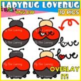 Valentine Ladybug Love Bug Clip Art
