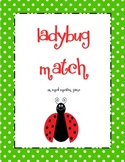 Ladybug Match: An Equal Equations Game