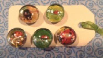 Ladybug Mini Magnet Set