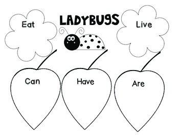 Ladybug Mini-unit
