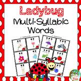 Ladybug Multi-Syllabic Words Spring Vocabulary