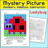 Summer Math Ladybug Mystery Picture - Addition and Subtraction