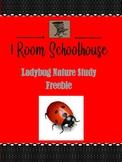 Ladybug Nature Study Unit