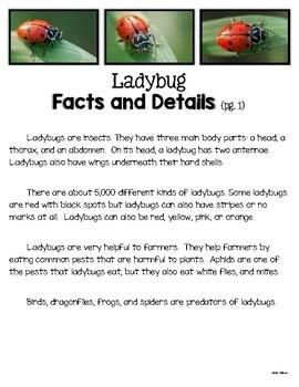 Ladybug Nonfiction Unit Text Cards, Reading Passage, Graphic Organizers, & More