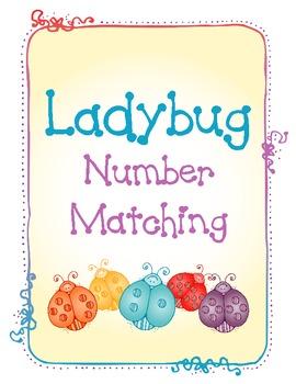 Ladybug Number Matching