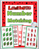 Ladybug Math Number Matching - Ten Frame, Tally Marks, Number Word, Etc